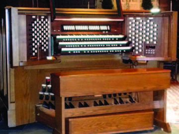 Organ 4